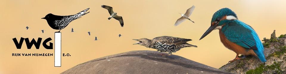 Vogelwerkgroep