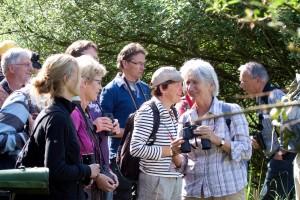 Dinsdagavondexcursie Millingerwaard @ Ingang Millingerwaard | Bemmel | Gelderland | Nederland